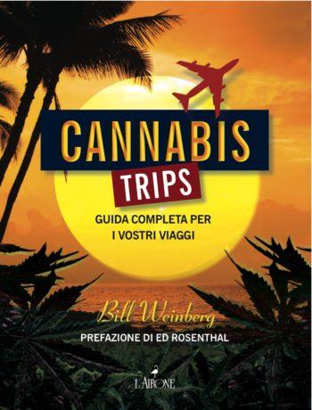 Cannabis Trips-89