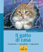 Il gatto di casa-0